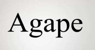 Agape Font 310x165 - Agape Font Family Free Download