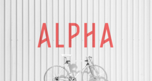 Alpha Font Family 310x165 - Alpha Font Family Free Download