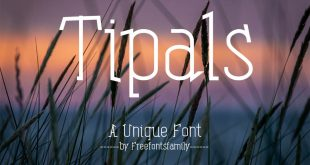 tipals font free 310x165 - Tipals Font Free Download