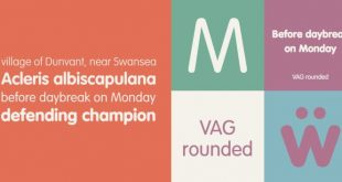 vag rounded font 310x165 - Vag Rounded Font Free Download