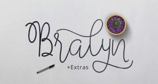 bralyn font 310x165 - Bralyn Script Font Free Download