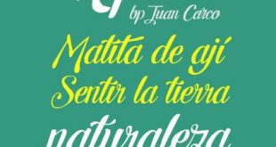 letra hipster 310x165 - Letra Hipster Font Free Download