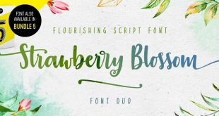 straberry blossom font 310x165 - Strawberry Blossom Brush Font Free Download