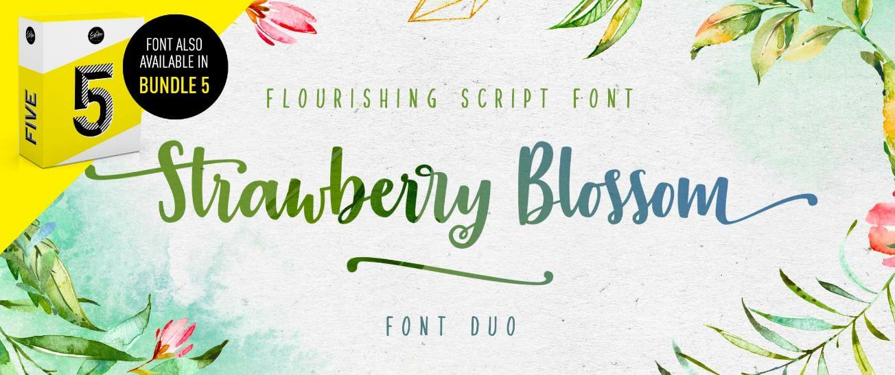 straberry blossom font - Strawberry Blossom Brush Font Free Download