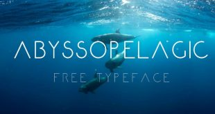 abyssolica font 310x165 - Abyssopelagic Font Free Download
