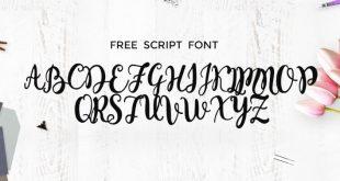 monogram font 310x165 - Monogram Script Font Free Download