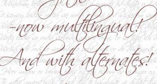 scriptina font 310x165 - Scriptina Pro Font Free Download